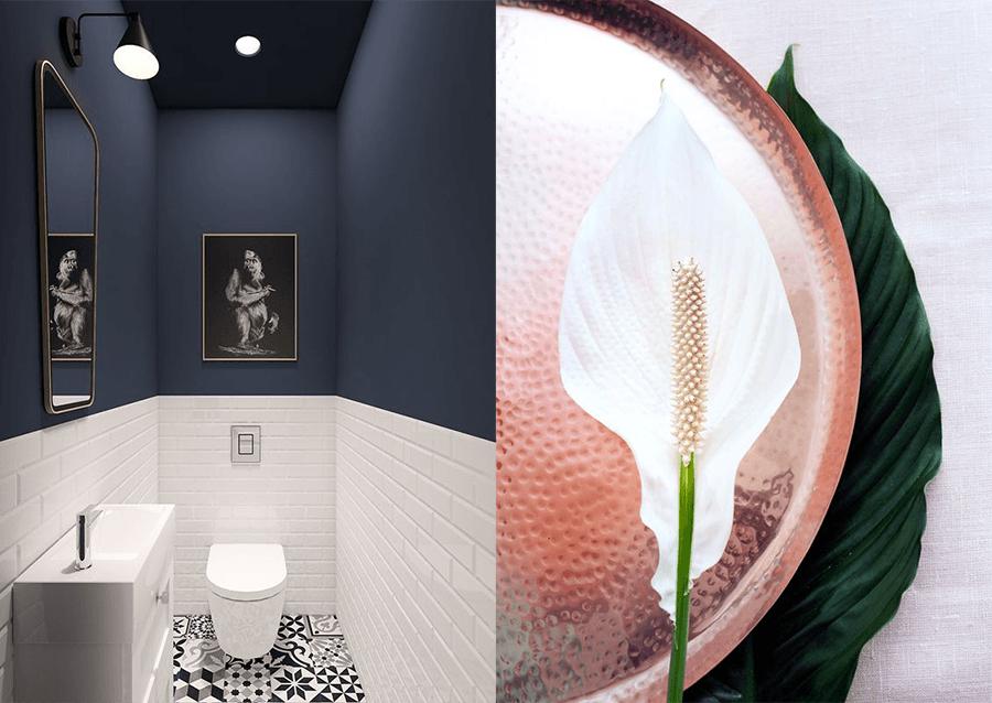Toilet-inspiratie-wc