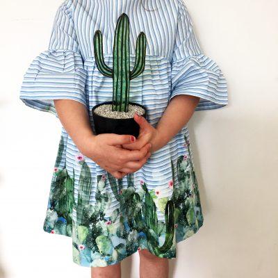 Mexico Cactus